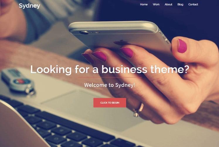 Sydney - 39+ BEST FREE WordPress Portfolio Themes [year]