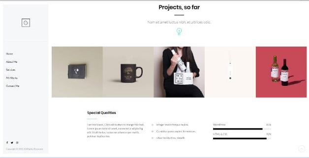 Cookie - 33+ NICE Developer WordPress Portfolio Themes [year]