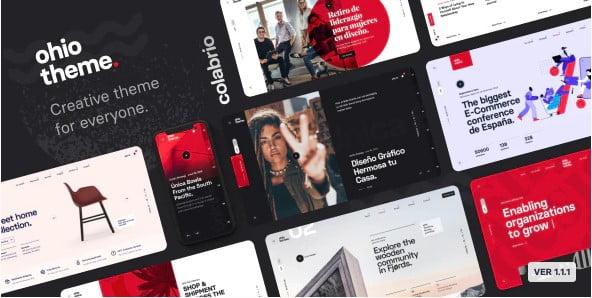 Ohio - 33+ NICE Developer WordPress Portfolio Themes [year]