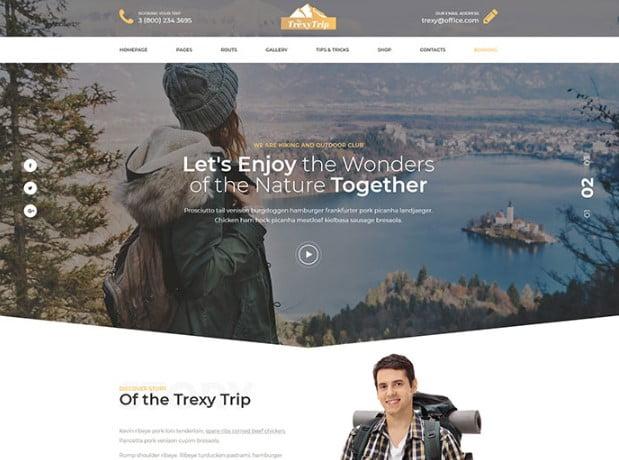 Trexy - 53+ BEST Designed PSD Website Templates [year]