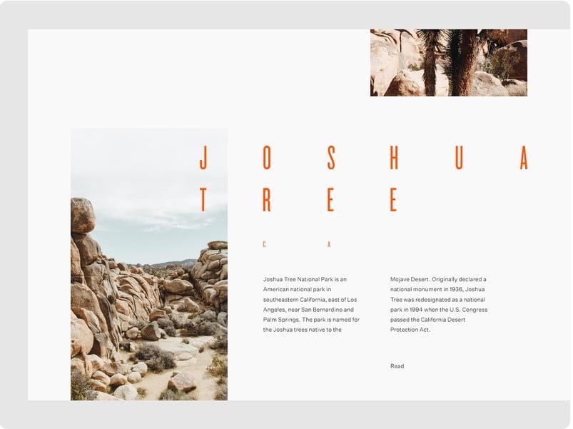 Joshua-Tree - 63+ BEST FREE Grid Web UI Design IDEA [year]