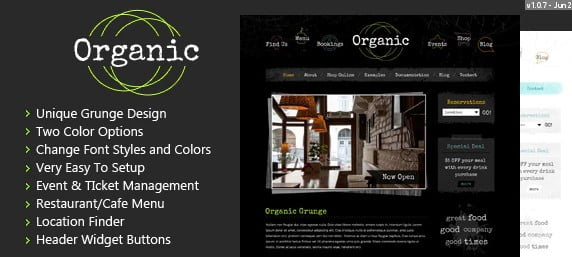Organic-Grunge - 35+ AWESOME Food & Drink WordPress Theme [year]