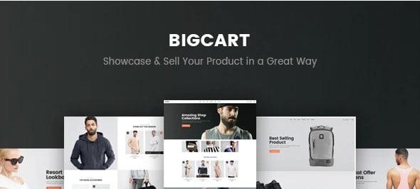 Bigcart - 53+ Pretty Ecommerce WordPress Themes [year]