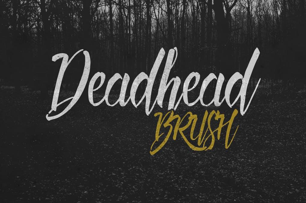 Deadhead-Brush - 50+ BEST Typography Logo Fonts [year]