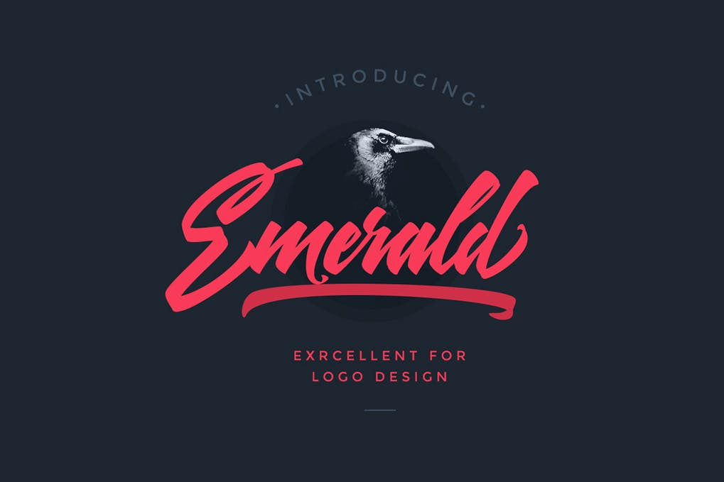 Emerald-Script-Font - 50+ BEST Typography Logo Fonts [year]