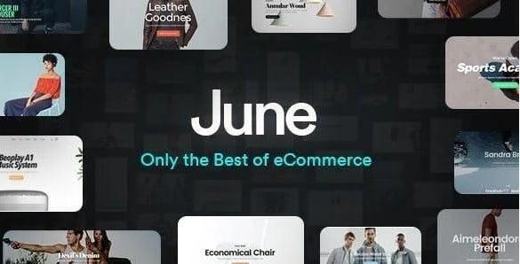 June - 53+ Pretty Ecommerce WordPress Themes [year]