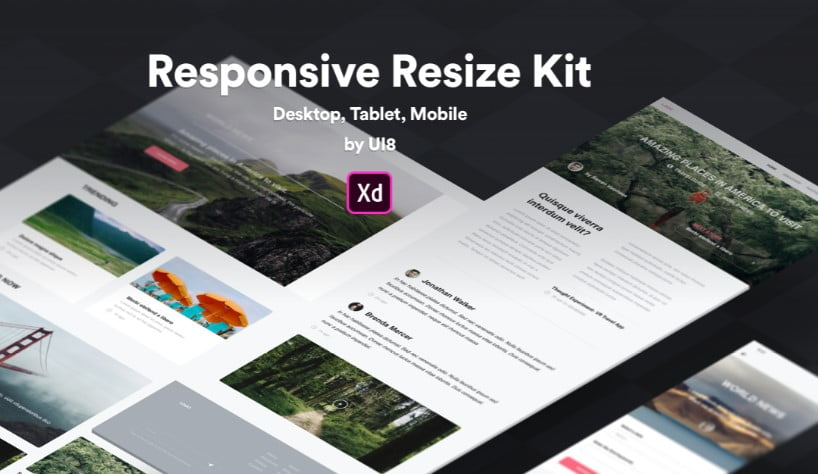 Responsive-Resize-Kit - 53+ BEST FREE Adobe XD Web & Mobile Kits [year]