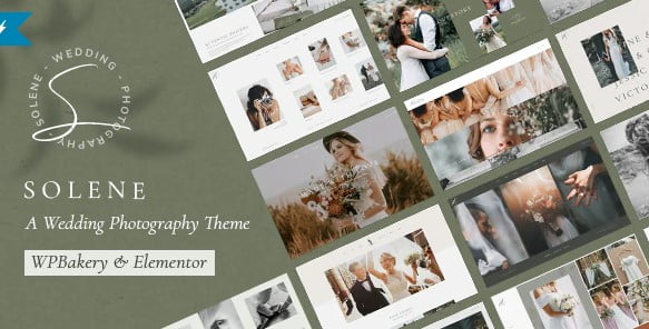 Solene - 35+ GREAT Wedding Invitation WordPress Themes [year]